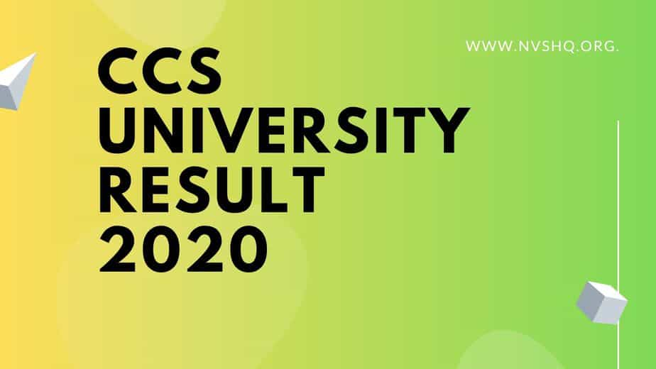 CCS University Result 2021 (Released) BA B.Sc B.Com UG/PG CCSU