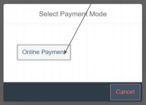 AP-sand-payment-mode