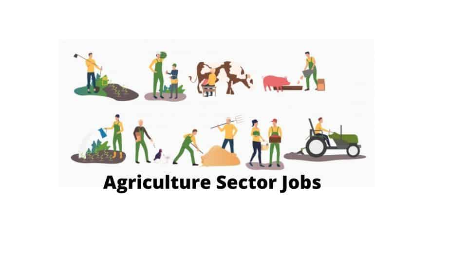 Agriculture Sector Jobs