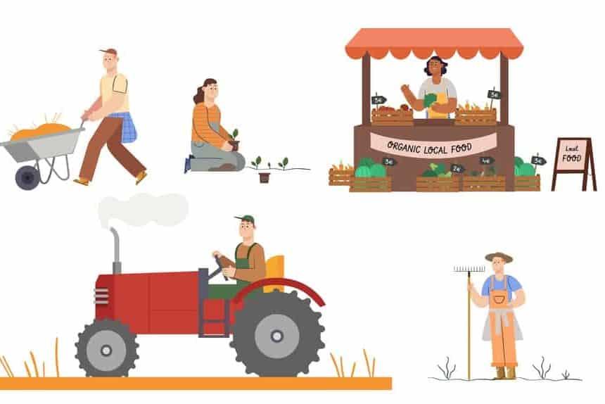PM-Kisan-Samman-Nidhi-Farmer-details