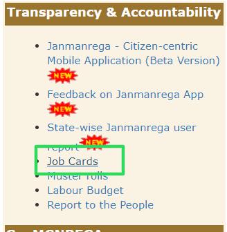 nrega-jonb-card-list